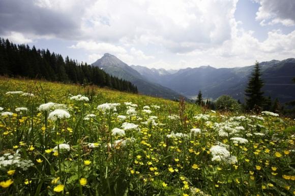 Der Umwelt zuliebe: Was Nachhaltigkeit bei ROBINSON genau bedeutet
