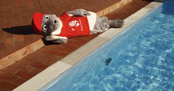 ROBINSON Maskottchen ROBY liegt am Pool