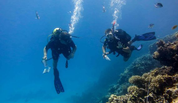 Taucher kontrollieren ein Riff
