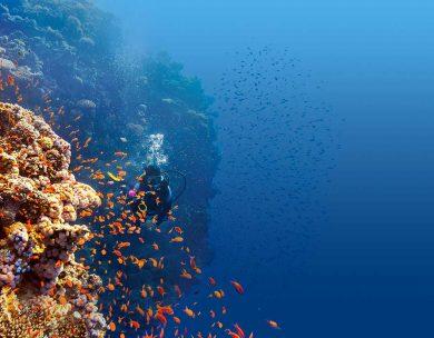 Nachhaltiger Urlaub: 6 Tipps für ökologisches Reisen