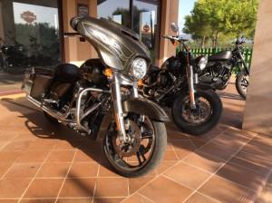 Harley-Davidson-Maschinen vor dem Club Cala Serena