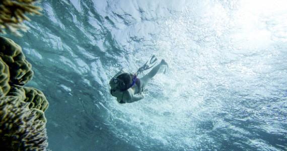 Frau taucht mit Schnorchel im Mund ab in die Tiefe des Meeres und betrachtet Korallen