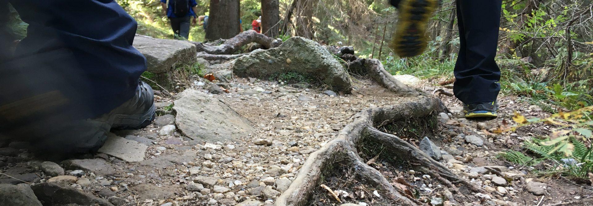 Wanderer auf steinigem Wanderweg