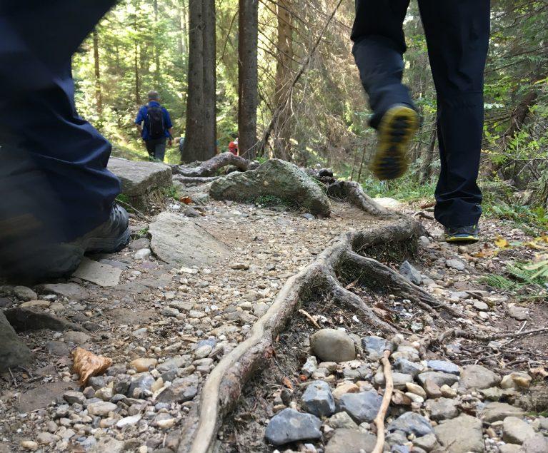 Steiniger Weg auf der Tröpolacher Almwanderung