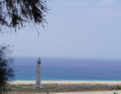 Die 5 schönsten Strände auf Fuerteventura