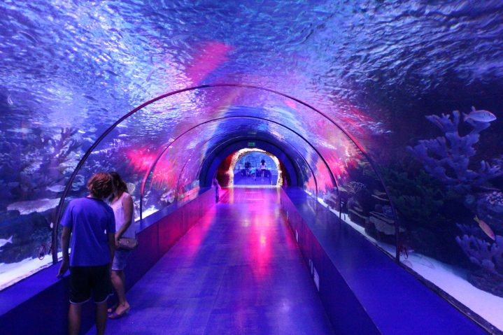 Aquarium Tunnel im Aquarium Antalya, Türkei