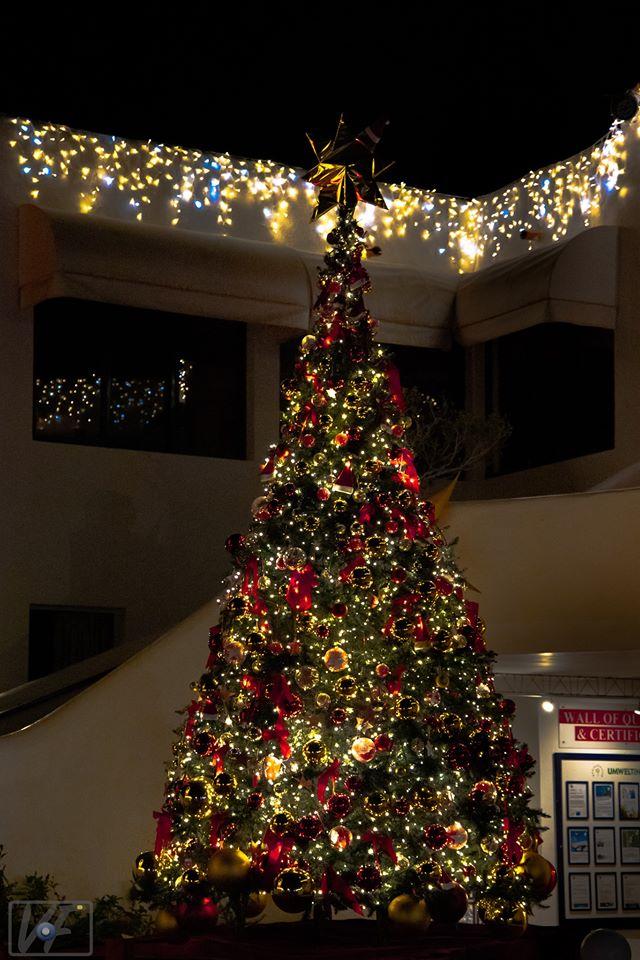 Er leuchtet: der festlich geschmückte Weihnachtsbaum im ROBINSON Club Esquinzo Playa