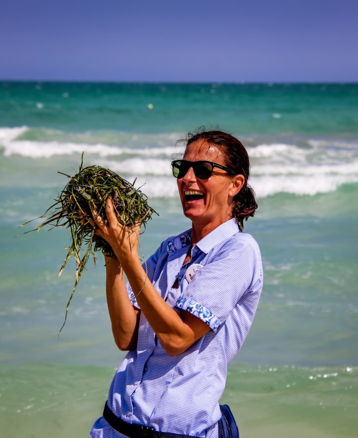Das Seegras wird von Hand ins Meer zurück gebracht.