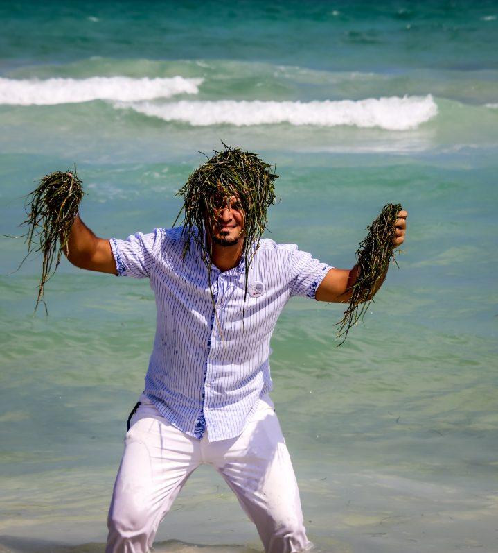 Seegras darf auf Djerba nicht einfach entfernt werden