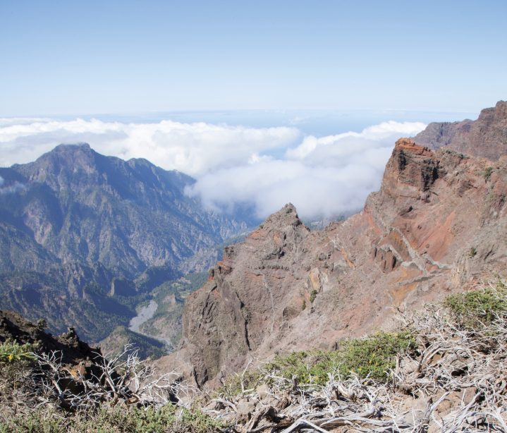 Wilde Natur auf La Palma, Kanarische Inseln