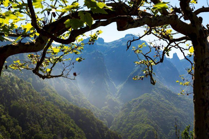 Traumhafte Natur auf Madeira, Portugal