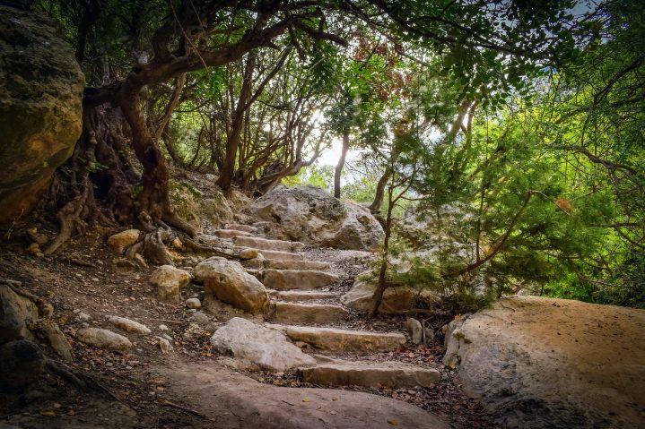 Akamas Nationalpark auf Zypern